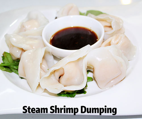 Steamed  Dumplings  (6)